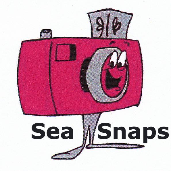 Sea Snaps